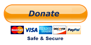 Donate Now - Safe & Secure